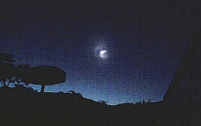 douglas-palmas-ilustracao